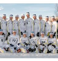 Национальная сборная Швеции