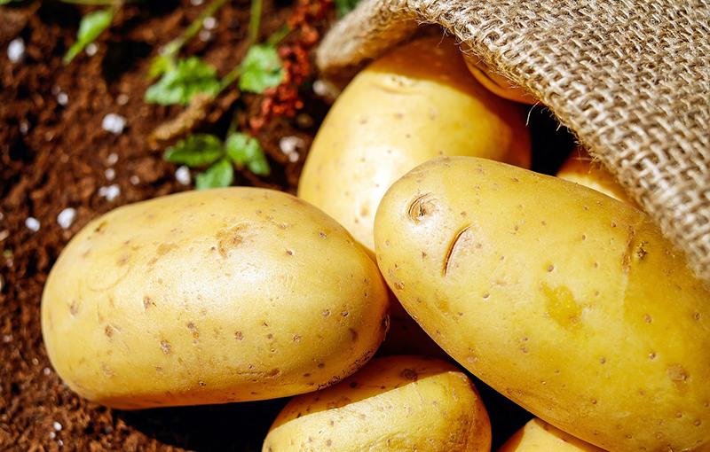 Посмотрите на картофель. В молодом виде он богат витамином К