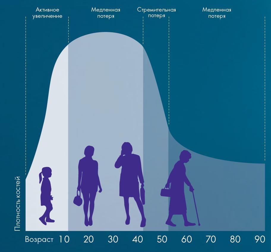 Таблица взаимосвязи запасов кальция в костях и возраста. Красота и Баланс