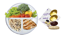 Модель тарелки для поддержания энергии и веса